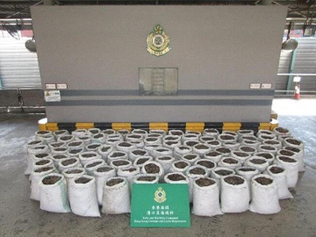 100 kilograms of suspected pangolin