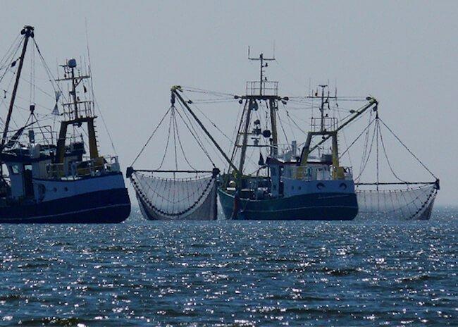 Fishing vessels_new banner_EN