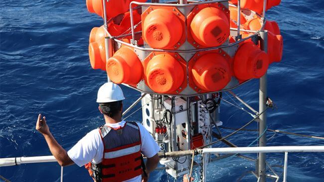 Deep sea mining zone hosts co2-consuming bacteria, scientists discover