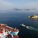 Maersk Trieste and Maersk Trenton in Yard