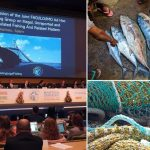 Joining forces to combat IUU fishing