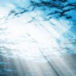 ocean representation image