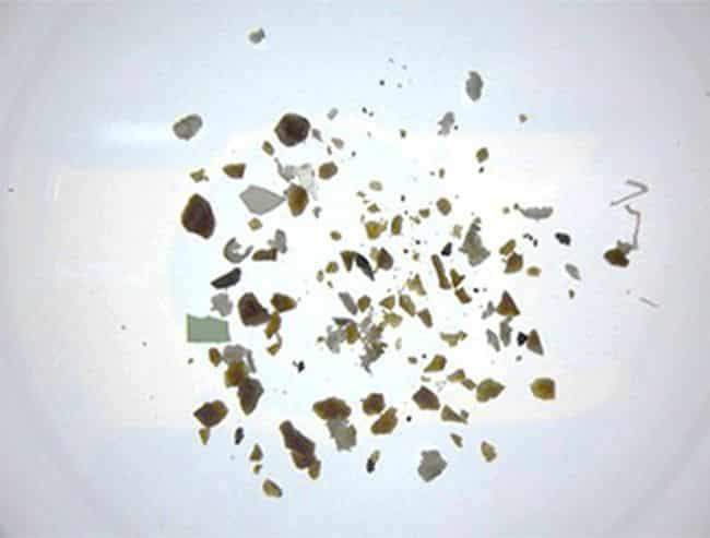 MOL & Miura To Test Microplastic Collection Device Installed On Newbuilding Wood Chip Carrier