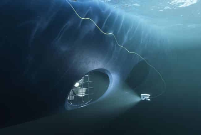 Hull, thruster and stern tube seal inspections