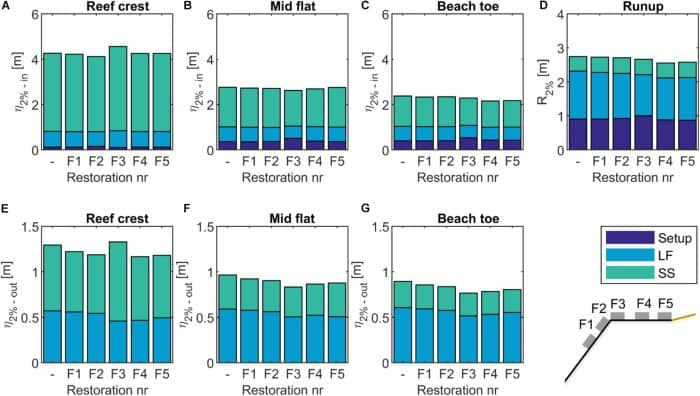 Coral Reef Restorations Can Be Optimized To Reduce Flood Risk